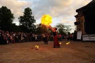 Eldshow.se på Kulturernas Karneval 2014